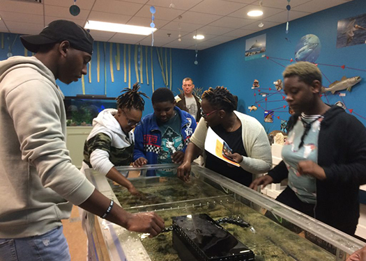multiple students around a fish tank