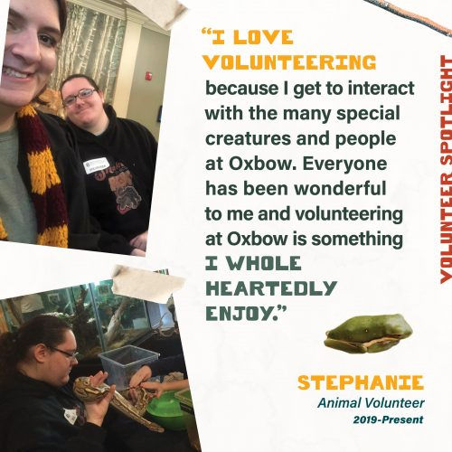 Volunteer Spotlight - I love volunteering because I get to interact with the many special creatures and people at Oxbow. Everyone has been wonderful to me and volunteering at Oxbow is something I whole heartedly enjoy. Stephanie Animal Volunteer 2019-Present